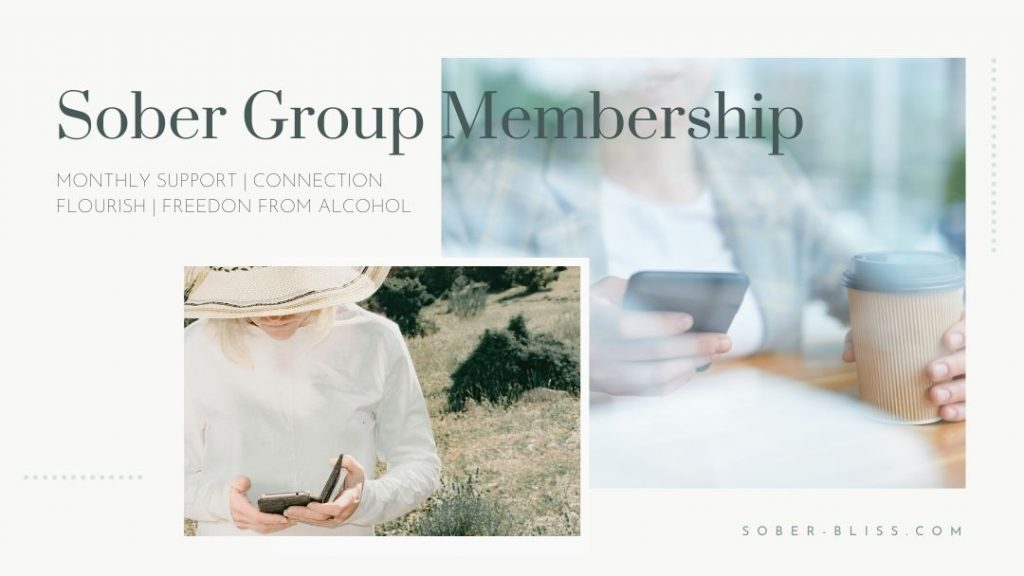 sober groups online